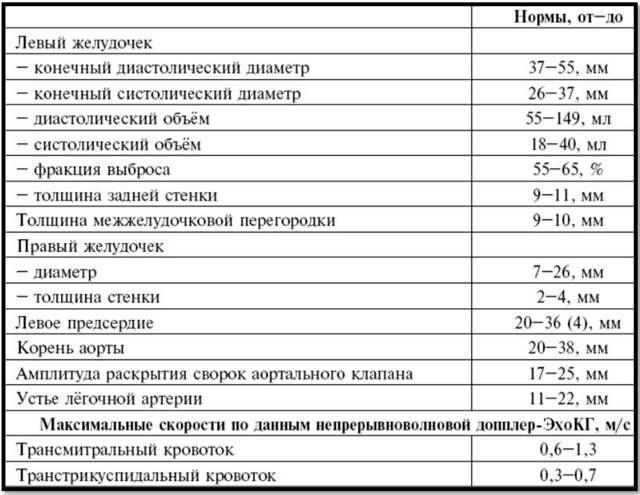 Эхокардиография: особенности и показания к проведению процедуры, расшифровка результатов эхоскопии