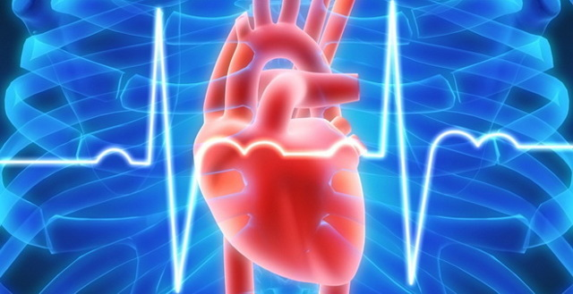 Левожелудочковая недостаточность: особенности патологии, причины, симптомы и лечение