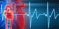 Экстрасистолия сердца: что это такое и как лечить народными средствами и препаратами