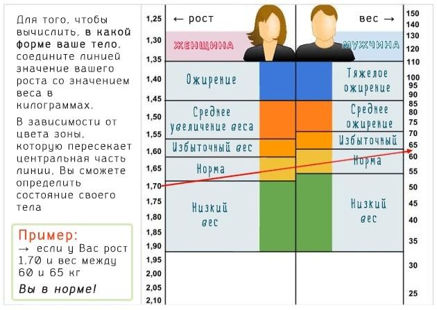 ЛПНП: причины повышения ЛНП и ЛПВП в организме, диагностика и оздоровление пациентов, основные показатели
