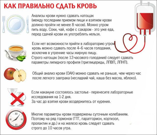 Как правильно сдавать кровь на сахар: как подготовиться к сдаче крови