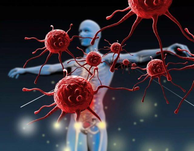 Антитела к тиреопероксидазе или АТ ТПО понижены - что это значит