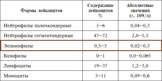 Эозинофилы: общие данные, повышенные и пониженные показатели в анализе крови, профилактика у взрослых и детей