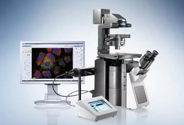 Определение кариотипа организма: исследование лимфоцитов из крови мужчины и женщины, описание результатов