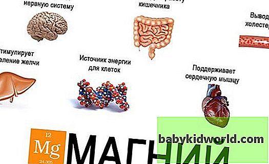 Продукты, содержащие магний в большом количестве: суточная доза для всех, таблица содержания магния