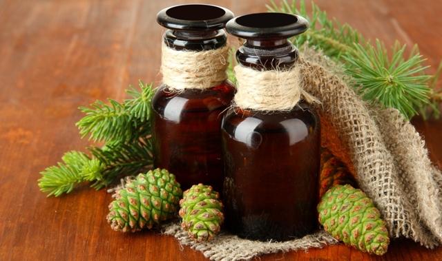 Настойка из сосновых шишек на водке: применение, польза и вред, противопоказания, рецепт приготовления