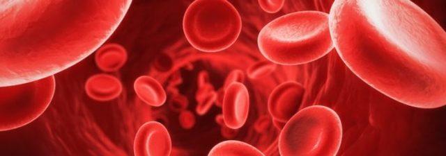 Что такое свободный гемоглобин в крови: норма показателей, причины отклонений, как лечить