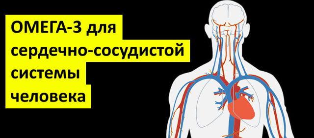 Омега 3 - для сосудов головного мозга и сердца