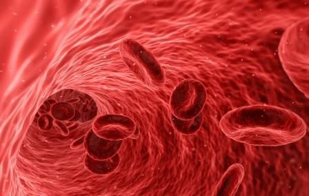 Повышены гемоглобин, эритроциты и гематокрит: причины, как лечить