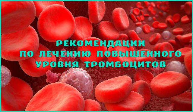 Повышены тромбоциты: причина увеличения количества элементов крови, назначение лечения