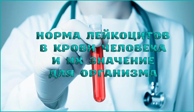 Лейкоциты в крови: норма показателей и причины отклонения от нормального уровня, значение клеток в организме