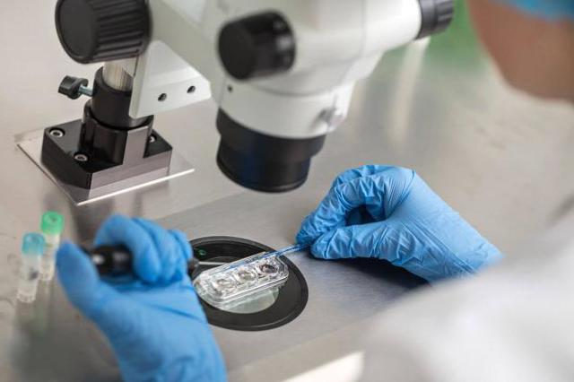Генетический анализ крови: показание, расшифровка, как его сделать