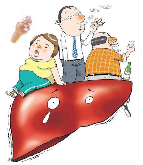 АсАт анализ крови: что это такое, причины повышения и понижения, как сдавать, расшифровка