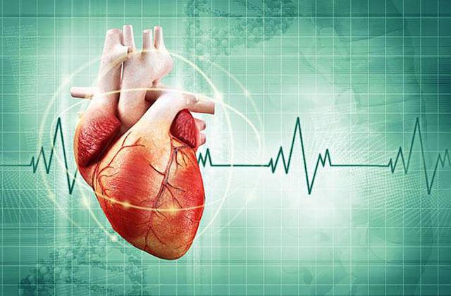 Как жара влияет на сердце и сосуды человека