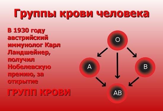 Какая группа крови подходит всем: совместимость, резус фактор