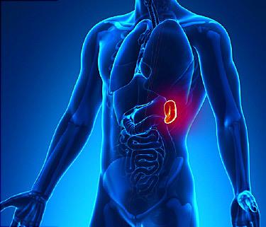 Лейкопения: причины возникновения и симптомы, виды онкозаболевания и методы лечения
