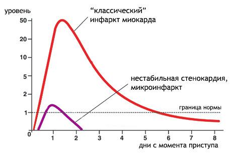 Тропонин: определение, норма, анализ и причины отклонений