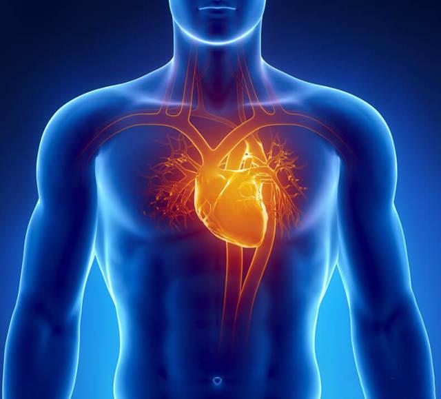 Как проверить, насколько изношено ваше сердце: тест