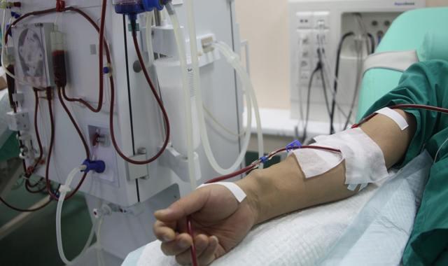ЛДГ обследование: показания к анализу крови, причины повышения и понижения лактатдегидрогеназа