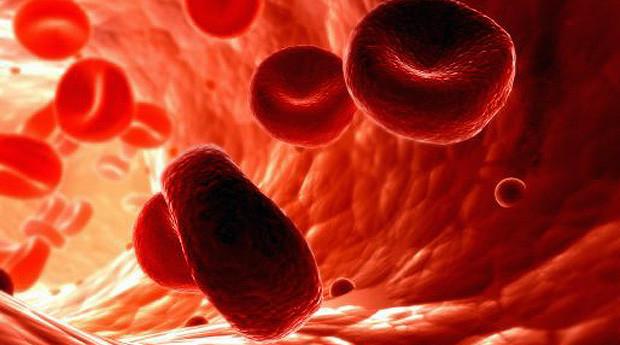 Цветовой показатель крови: что это такое, как рассчитать, причины отклонений, норма