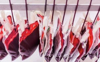 Какой объем крови содержится в теле взрослого человека