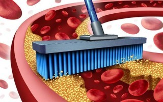 Как почистить сосуды от холестерина народными средствами